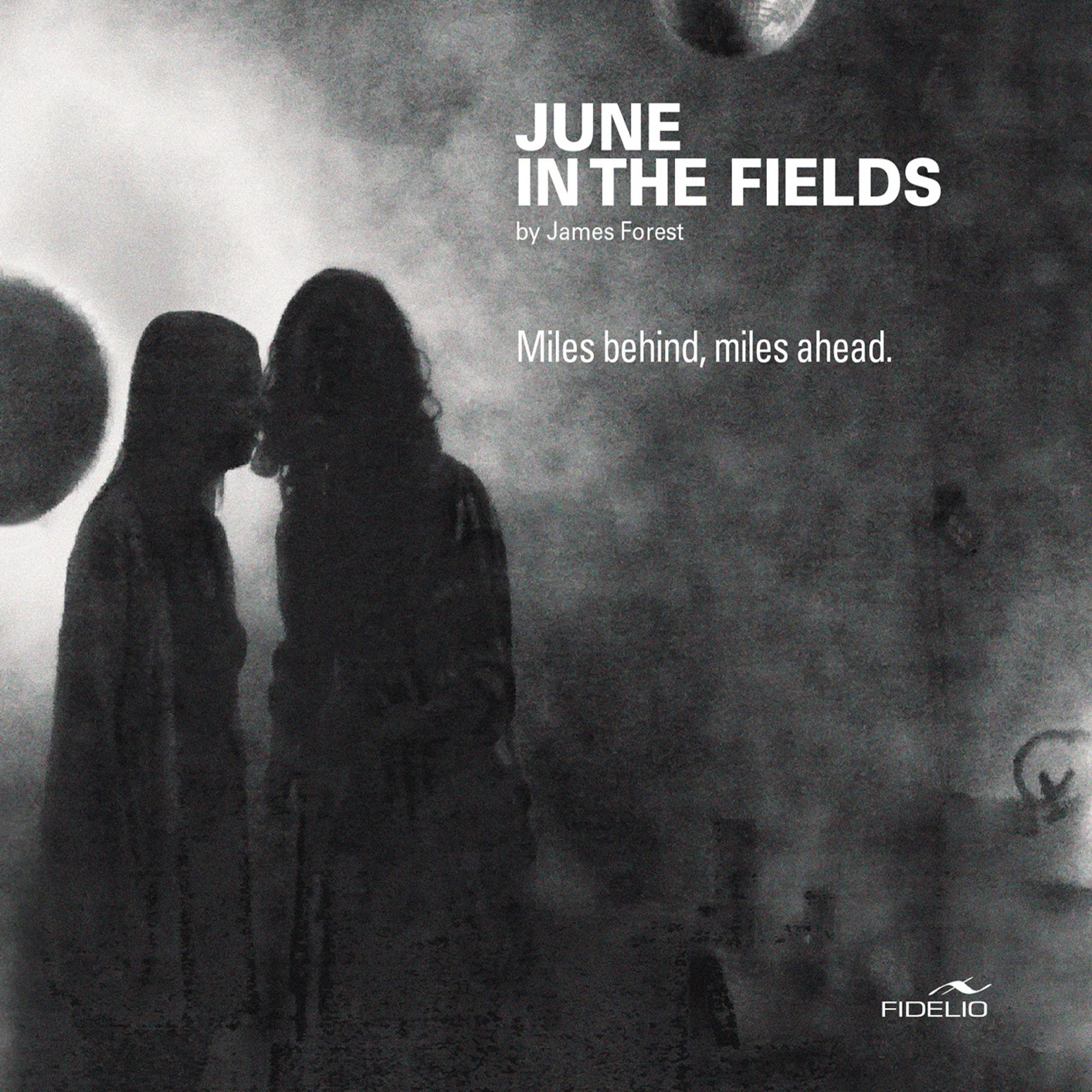 June In The Fields - Miles behind, miles ahead