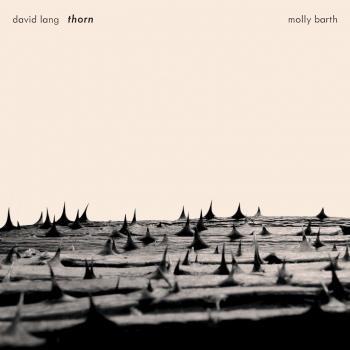 Cover David Lang: Thorn