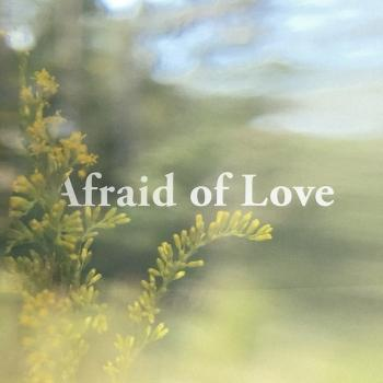 Cover Afraid of Love