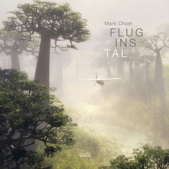 Cover Flug ins Tal