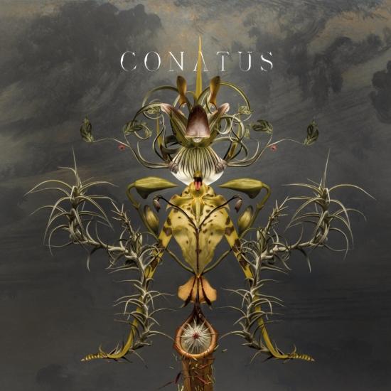Cover Conatus