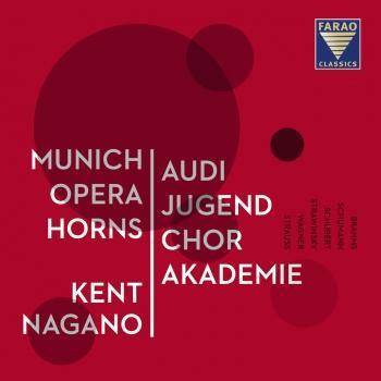 Cover Brahms / Schumann / Schubert / Strawinsky / Wagner / Strauss