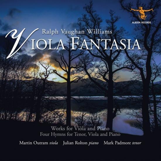 Cover Williams: Viola Fantasia