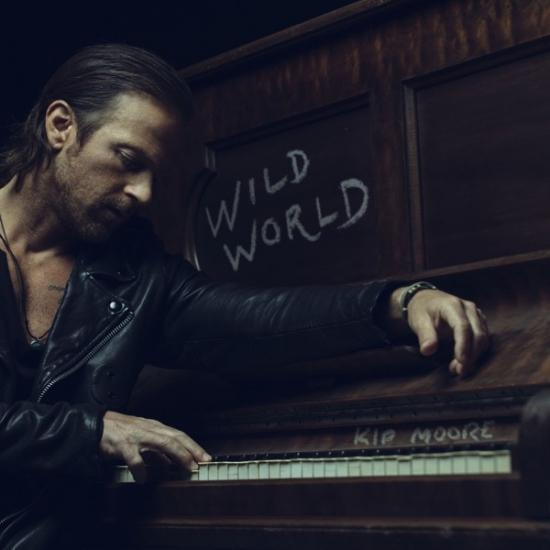 Cover Wild World