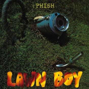 Cover Lawn Boy