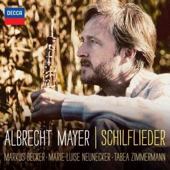 Cover Schilflieder