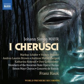 Cover Mayr: I Cherusci