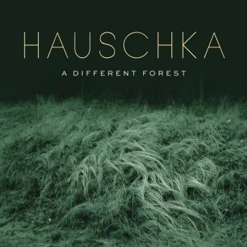 Cover A Different Forest