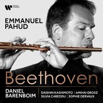 Cover Beethoven: Works for Flute