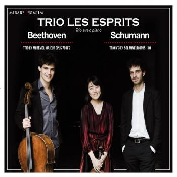 Cover Beethoven & Schumann Trios