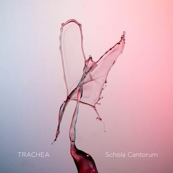 Cover Trachea