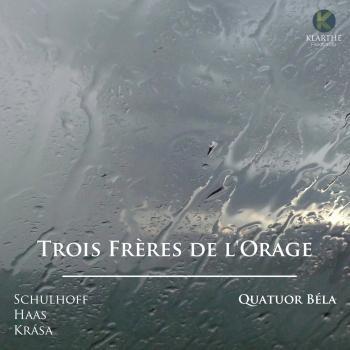 Cover Trois Frères de l'Orage