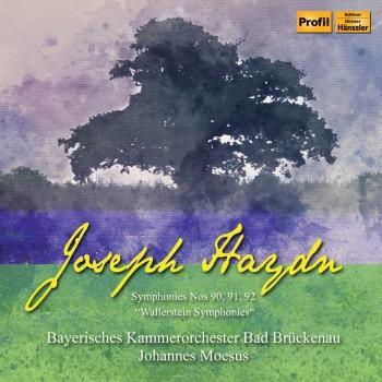 Cover Haydn: Wallerstein Symphonies