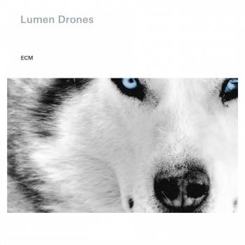 Cover Lumen Drones