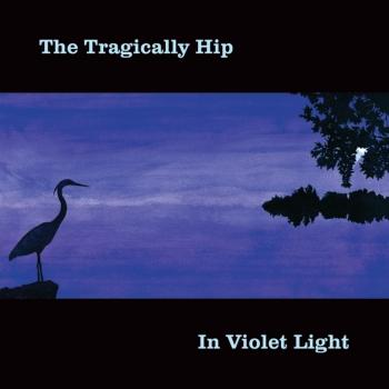 Cover In Violet Light (Remastered)