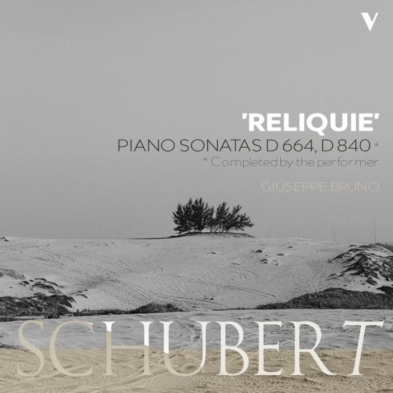 Cover Schubert: Piano Sonata No. 13, D. 664 & No. 15, D. 840 'Reliquie'