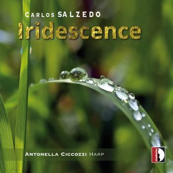 Cover Iridescence