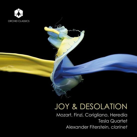 Cover Joy & Desolation