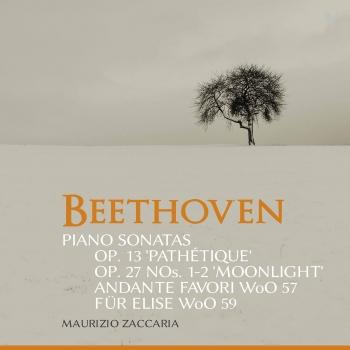 Cover Beethoven: Piano Sonatas, Opp. 13 & 27 & Other Works
