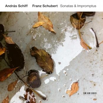 Cover Franz Schubert: Sonatas & Impromptus