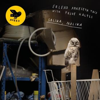 Cover Salika, Molika