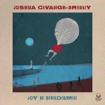 Cover Joy in Bewilderment