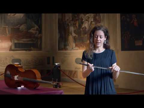 Video Elinor Frey - Antonio Vandini: Complete Works