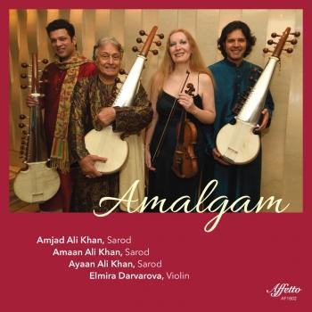 Cover Amalgam