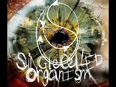 Video Single Celled Organism - Splinter In The Eye (Making of) Part 1