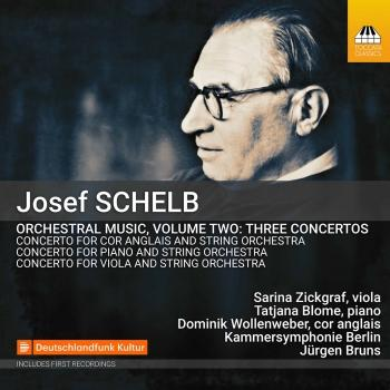 Cover Schelb: Orchestral Music, Vol. 2