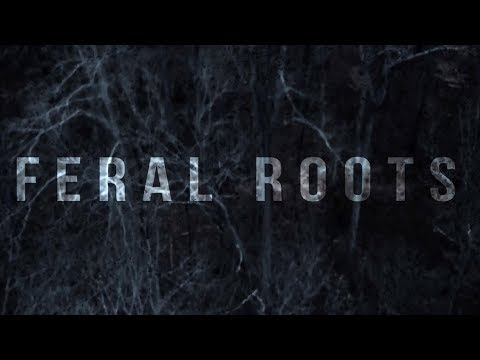 Video Rival Sons - Feral Roots