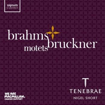 Cover Brahms & Bruckner: Motets