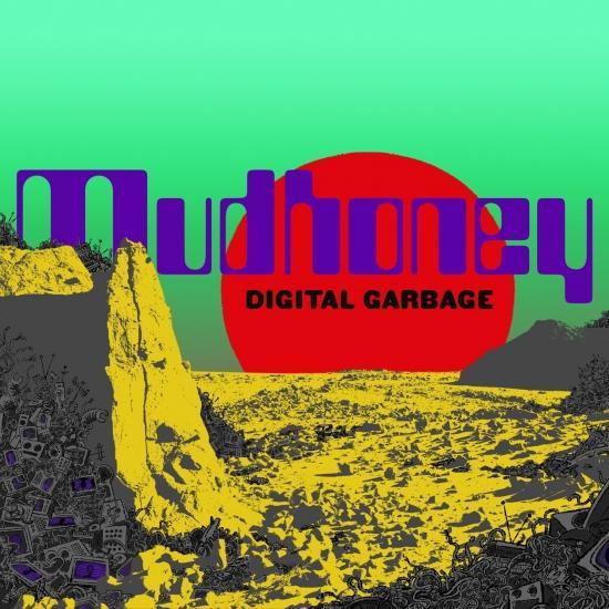 Cover Digital Garbage