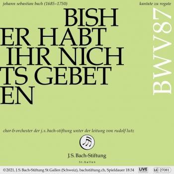 Cover Bachkantate, BWV 87 - Bisher habt ihr nichts gebeten in meinem Namen (Live)