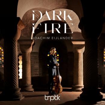Cover Dark Fire