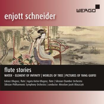 Cover Enjott Schneider: Flute Stories