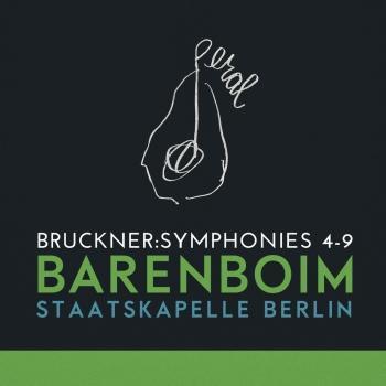 Cover Bruckner: Symphonies 4-9