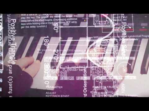 Video The Magnetic Fields - '81 How to Play the Synthesizer (Official Video)