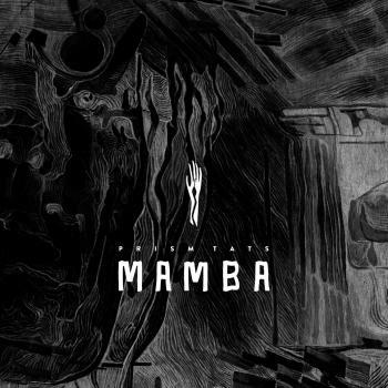 Cover Mamba