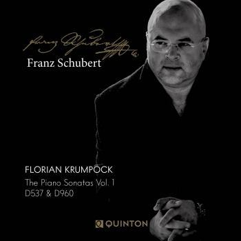 Cover Franz Schubert: The Piano Sonatas Vol. 1