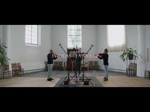 Video 3VIOLAS - FAUNA
