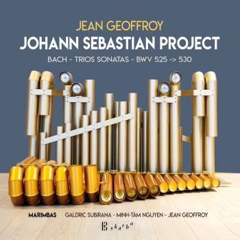 Cover Jean Geoffroy: Johann Sebastian Project - Bach Trio Sonatas BWV 525-530