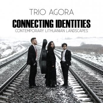 Cover Connecting Identities: Contemporary Lithuanian Landscapes
