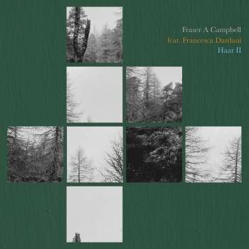 Cover Haar II