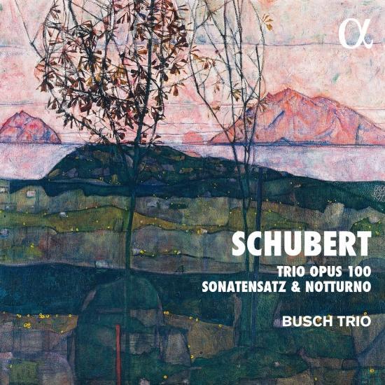 Cover Schubert: Trio Opus 100, Sonatensatz & Notturno