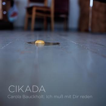 Cover Carola Bauckholt: Ich muss mit Dir reden