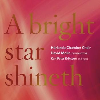 Cover A Bright Star Shineth
