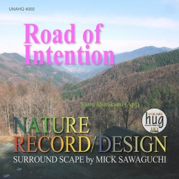 Cover Road of Intention (Stereo-Version)