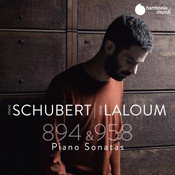 Cover Schubert: Sonatas D. 894 & D. 958