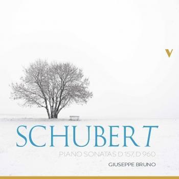 Cover Schubert: Piano Sonatas, D. 157 & 960